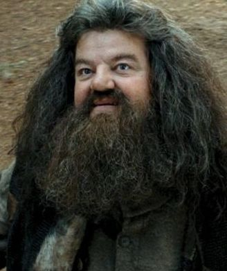 hagrid_no-actually-its-totally-me